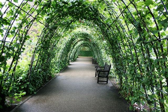 Kensington Gardens i London